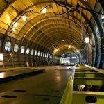 Дератизация воздушного судна