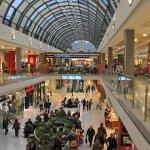 Травля крыс и мышей в торговых центрах
