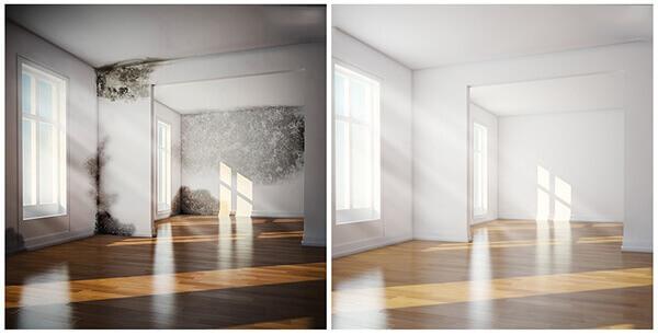 обработка от плесени в комнате по потолку