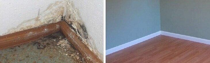 удаление плесневого грибка в углу комнаты